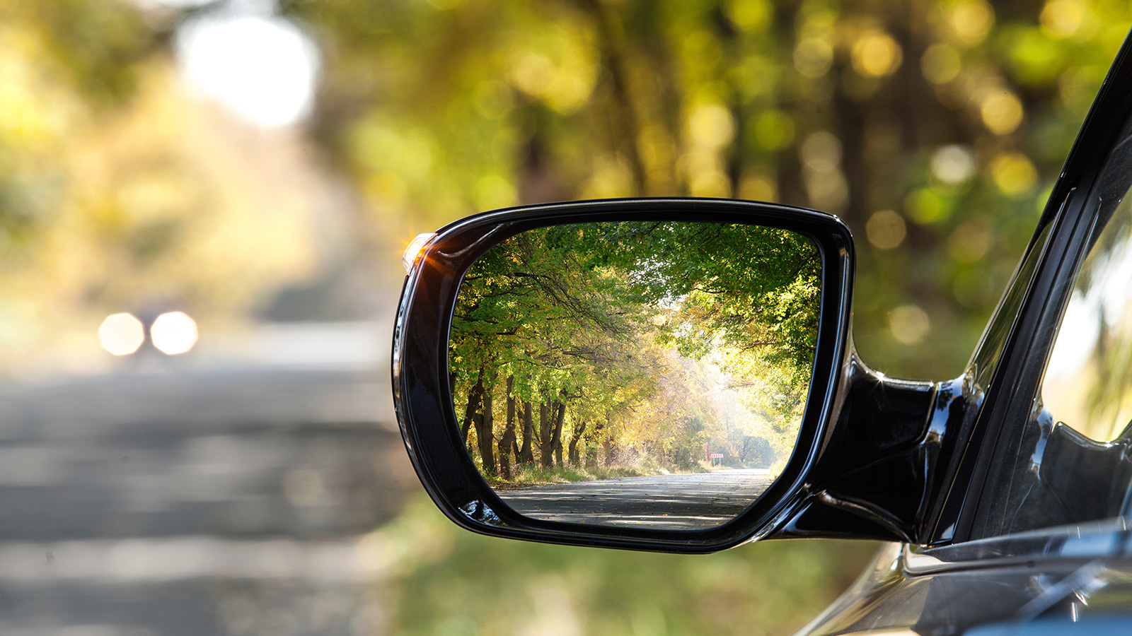 View behind card in left door mirror while driving down tree –lined road.